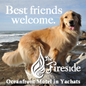 fireside motel oregon coast pet friendly